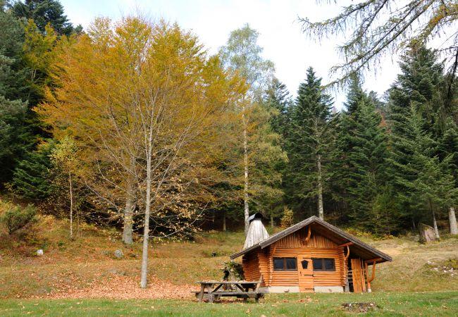 Chalet à La Bresse - 2. Chalet traditionnel en pleine nature, 8 p, 4 ch