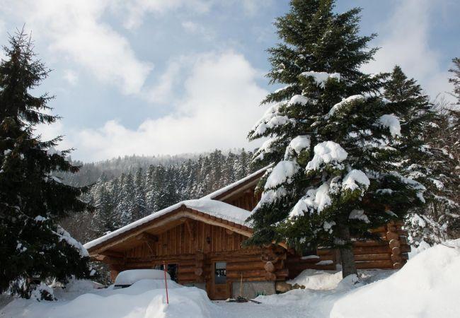 Chalet à La Bresse - 916. Magnifique chalet rondins 14/16p, 220m², 6ch