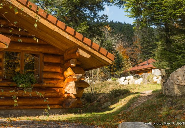 Chalet à La Bresse - 4. Magnifique chalet rondins 4/6 p, 52 m², 2 ch G